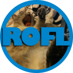 The ROFL badge