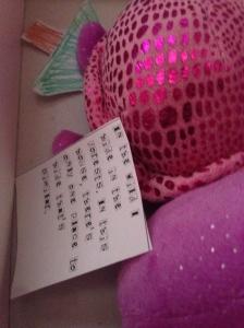 turtle inna box.